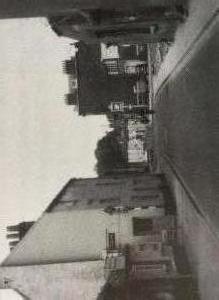 IMG 4952